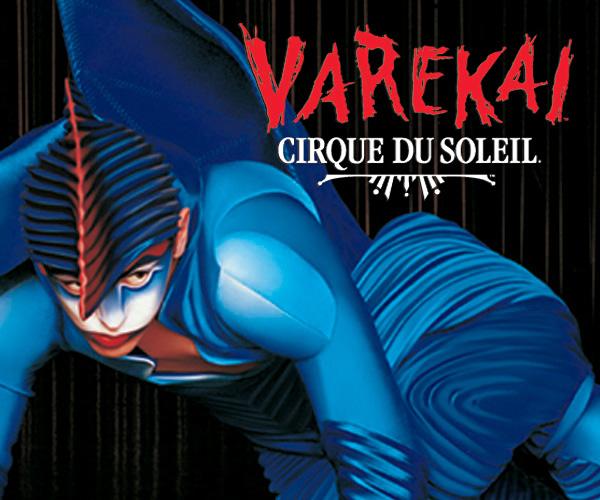 cirque du solleil strategic management Running head strategic management a case study of cirque de soleil strategic management a case study of cirque.